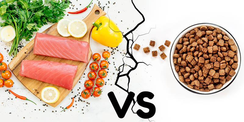 Pienso vs Comida natural